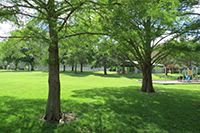 A Relaxing Park in Overland Park, KS